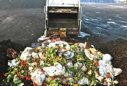 A kidobott élelmiszerek nagy része a családi hűtőkből kerül ki
